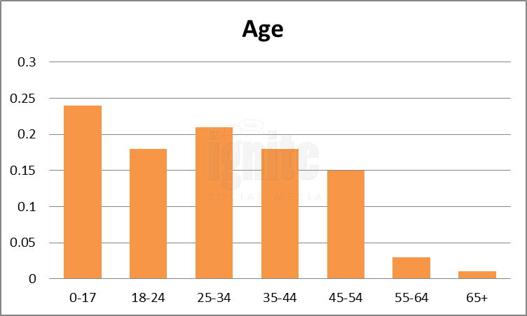 Age Breakdown For Bebo