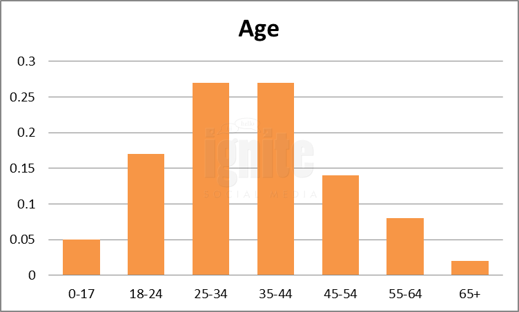 Age Breakdown For Livejournal