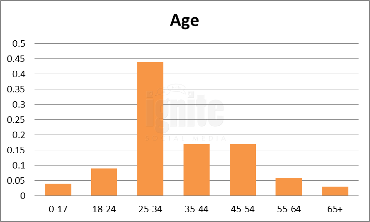 Age Breakdown For Netlog