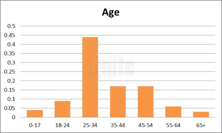 Age Breakdown For Netlog