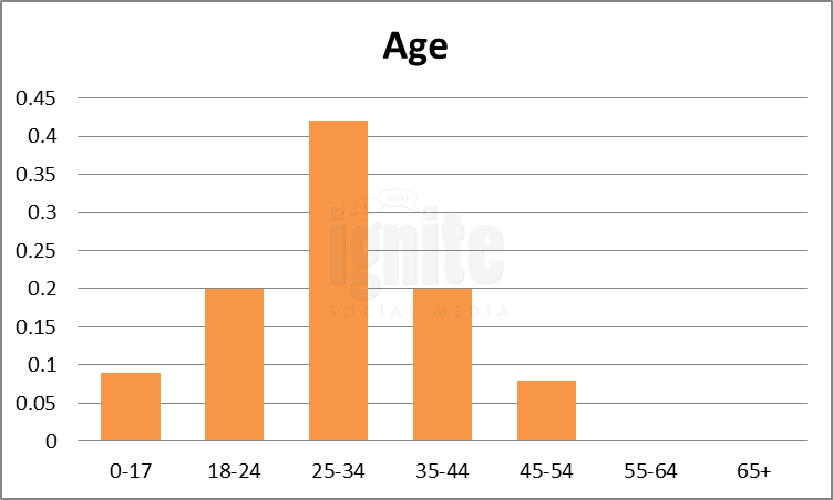 Age Breakdown For Skyrock