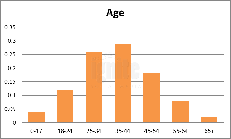 Age Breakdown For Twitter