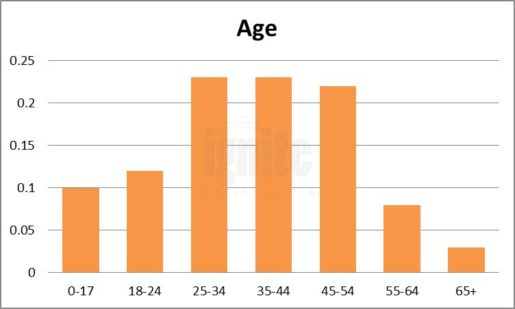 Age Breakdown For YouTube